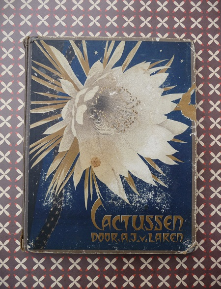 'cactussen' uit 1931, door A.J. van Laren 1