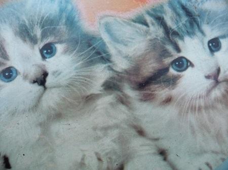 dienblad kittens jaren 50 4